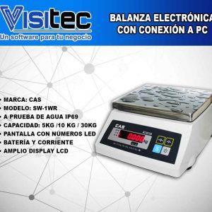 Balanza Electrónica SW 1WR